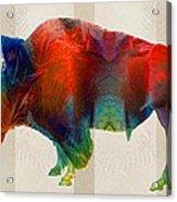 Buffalo Animal Print - Wild Bill - By Sharon Cummings Acrylic Print