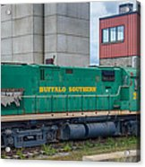 Buffalo Southern 2010 Acrylic Print