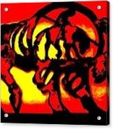 Buffalo Sun Set Acrylic Print
