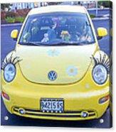 Bug-eyes Acrylic Print