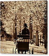 Buggy Ride Acrylic Print by Joan Davis