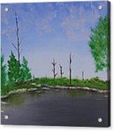 Bullfrog Reservoir Acrylic Print