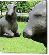 Bulls 2 Acrylic Print by Randall Weidner