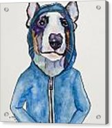 Bully For The Hoodie Acrylic Print