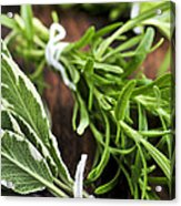 Bunches Of Fresh Herbs Acrylic Print