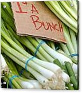 Bunches Of Onions Acrylic Print