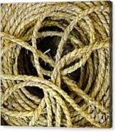 Bundle Of Old Straw Rope Acrylic Print