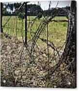 Bundled Barbed Wire Acrylic Print