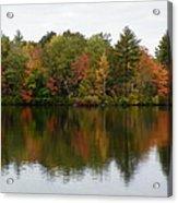 Bunganut Lake Foliage 4 Acrylic Print