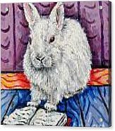 Bunny White Rabbit Reading A Book Acrylic Print by Jay  Schmetz