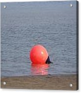 Buoy In The Water Acrylic Print