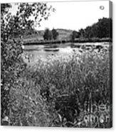 Burford Lake Acrylic Print
