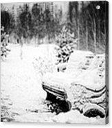 Buried In Snow Acrylic Print
