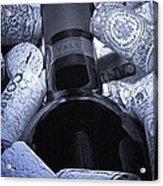 Buried Wine Bottle Acrylic Print by Tom Mc Nemar