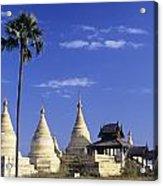 Burma Myanmar, White Minochanthar Acrylic Print