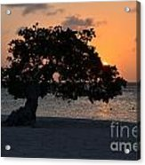 Burning Beach Sunset Acrylic Print