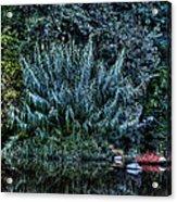 Bush Reflection Acrylic Print