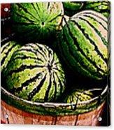 Bushel Full Of Melons Acrylic Print