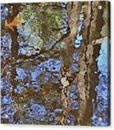 Reflection In Bushkill Falls  Acrylic Print