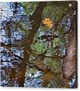 Second  Reflection In Bushkill Falls  Acrylic Print