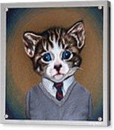 Business Casual Kitten Acrylic Print