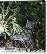 Bust In A Garden With Staghorn Fern Acrylic Print