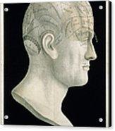 Bust Of Johan Spurzsheim Acrylic Print