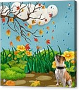 Buster And The Tree Acrylic Print