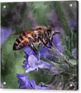 Busy As A Bee Acrylic Print by Jeff Swanson