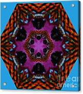 Busy  Bee Kaleidoscope Acrylic Print