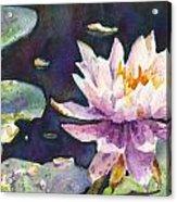Butchart's Lily Acrylic Print