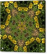 Buttercup Kaleidoscope Acrylic Print