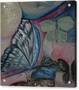 Butterflies And Spheres Acrylic Print