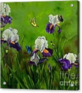 Butterflies In The Iris Acrylic Print