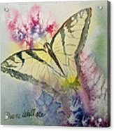 Butterfly Kisses Acrylic Print