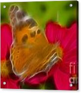 Butterfly-5416-fractal Acrylic Print