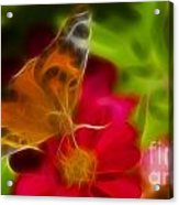 Butterfly-5430-fractal Acrylic Print