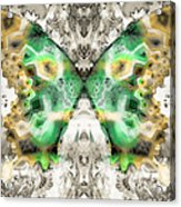 Butterfly Abstraction 6 Acrylic Print