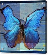 Butterfly Art - Dream It Do It - 99at3a Acrylic Print