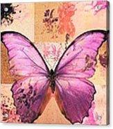 Butterfly Art - Sr51a Acrylic Print