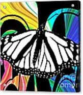 Butterfly Abstract Wall Art Decor Acrylic Print