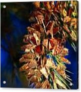 Butterfly Cluster Fractal Acrylic Print