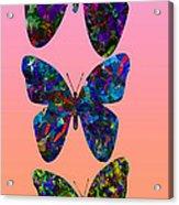 Butterfly Collage IIII Acrylic Print