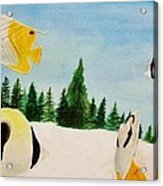 Butterfly Fish Acrylic Print by Savanna Paine