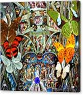 Butterfly In Cappella Sistina Sistinechapel Acrylic Print