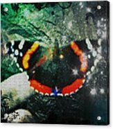 Butterfly Magick Acrylic Print