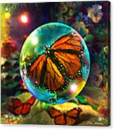 Butterfly Monarchy Acrylic Print