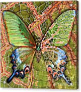 Butterfly Mosaic 03 Elena Yakubovich Acrylic Print by Elena Yakubovich