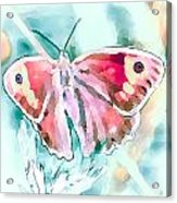 Butterfly On Flower 1 Acrylic Print