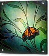 Butterfly Pause V1 Acrylic Print